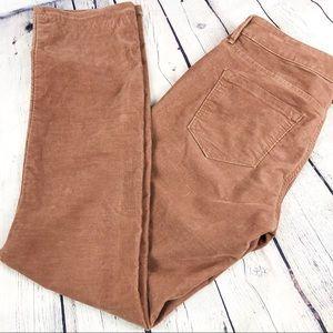 Ann Taylor LOFT Modern Straight Corduroy Pants